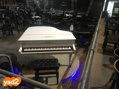 נפלאות פסנתר כנף לבן חשמלי יחודי כלי נגינה יד שניה - ad IP-99